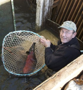 Bruce Netting Salmon